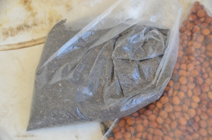 Chia & Pigeon Pea seeds provided to us by Miracles in Action