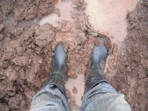Planting crops in the fields can be very difficult due to rain.